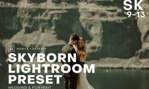 Skyborn High Quality Premium Lightro 4552315