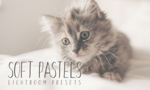 Soft Pastel Lightroom Presets 484418