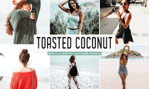 Toasted Coconut Lightroom Presets 4667123