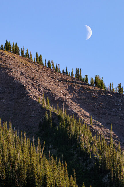 Crescent Moon Rising Over Mountain with Trees