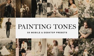 50 Painting Tones Lightroom Presets and LUTs
