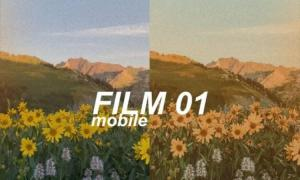 Alex Gowon - FILM 01 Mobile Preset