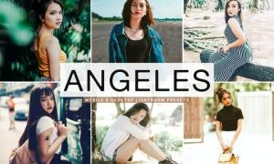Angeles Mobile & Desktop Lightroom Presets
