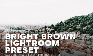 Bright and Brown Lightroom Preset 4552387