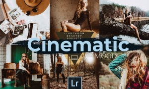 Cinematic Mood LR Desktop Presets 4709283