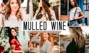 Mulled Wine Mobile & Desktop Lightroom Presets
