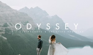 Tribe Archipelago - ODYSSEY LR/ACR PRESETS + PROFILES