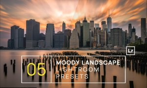 5 Moody Landscape Lightroom Presets + Mobile