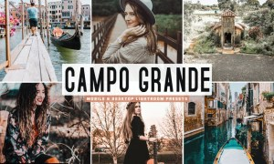 Campo Grande Mobile & Desktop Lightroom Presets