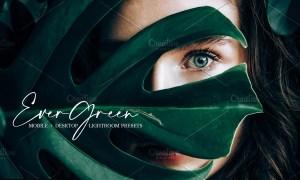 Evergreen Lightroom Presets | Bundle 4585358