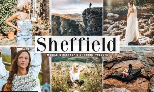 Sheffield Mobile & Desktop Lightroom Presets