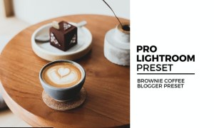 Brownie Coffee Blogger Preset