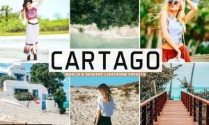 Cartago Mobile & Desktop Lightroom Presets