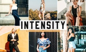 Intensity Mobile & Desktop Lightroom Presets