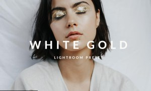 White Gold Lightroom Desktop Preset 5033142