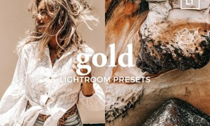 4 Lightroom Presets GOLD 5321505