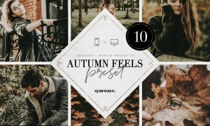 Autumn Feels Lightroom Presets 5251178