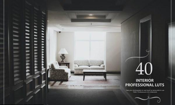 40 Interior LUTs (Look Up Tables) CSBTJDX