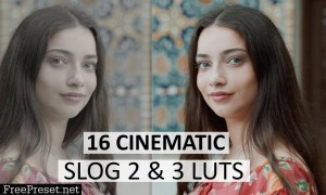 Cinematic Luts (Slog2 & Slog3) 4963148
