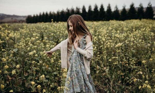 Danielle Navratil - The Beholden Presets Collection