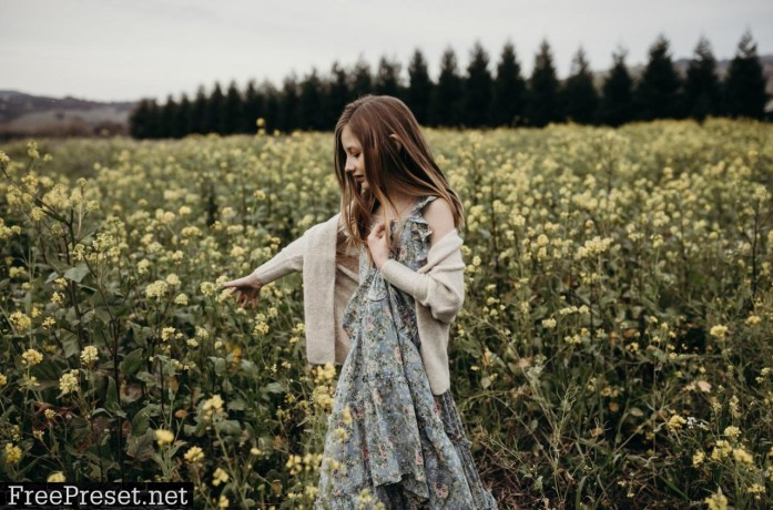 Danielle Navratil - The Beholden Presets Collection