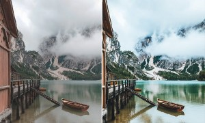 Forest Moody-Travel Presets for Mobile and Desktop