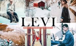 Levi Mobile & Desktop Lightroom Presets