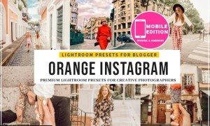 Orange Instagram Blogger Presets