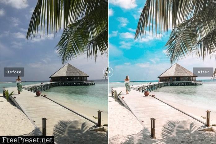 Palm Beach Mobile & Desktop Lightroom Presets