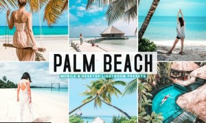 Palm Beach Mobile & Desktop Lightroom Presets