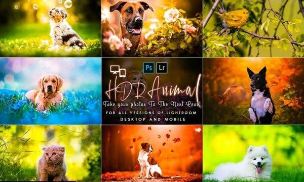 PRO HDR Animal Lightroom Presets