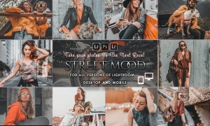 Street Mood Presets Desktop & Mobile