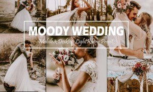 10 Moody Wedding Mobile & Desktop Lightroom Presets, Fall LR