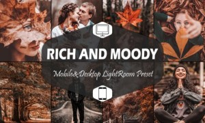 10 Rich and Moody Lightroom Presets 5916286