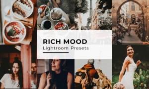 10 Rich Mood Lightroom Presets 5435092