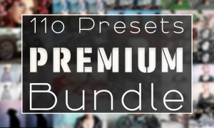 110 Premium Lightroom Preset Bundle 5096101