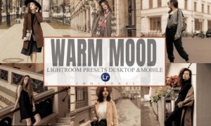 6 Warm Mood Lightroom Desktop and Mobile 5930796