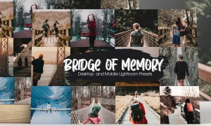 Bridge of Memory Lightroom Presets 5291104