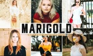 Marigold Mobile & Desktop Lightroom Presets