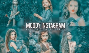 Moody INSTA Presets ( Desktop and Mobilen )