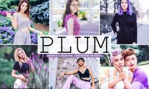 Plum Mobile & Desktop Lightroom Presets