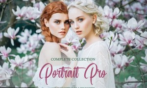 Portrait Pro Complete Collection 4822070