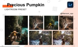 Precious Pumpkin - Lightroom Presets 5238840
