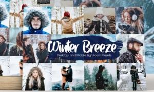 Winter Breeze Lightroom Presets 5282928