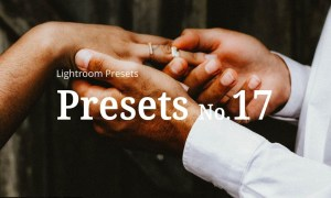 10 Wedding Lightroom Presets 5252371