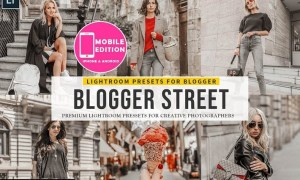 Blogger Street Lightroom Presets