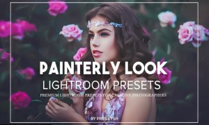 Painterly Lightroom Presets