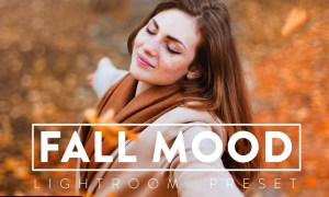 10 MOODY FALL Lightroom Preset 5532981