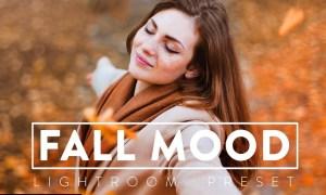 10 MOODY FALL Lightroom Preset 5532981