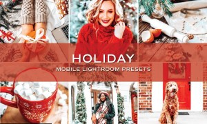5 Bright Holiday Lightroom Presets 5701798